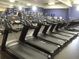 Commercial Gym Equipment | Fitness & Exercise Solutions IN