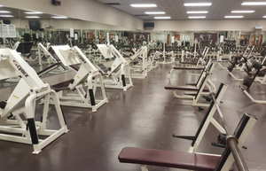 fitness equipment distributor fitness and exercise solutions