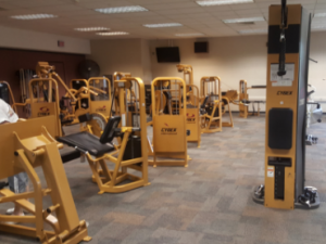 New or Used Gym Equipment: What's Best? | Fitness ...